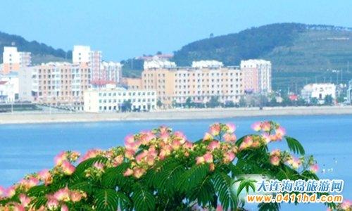 广鹿岛爱丽旅店