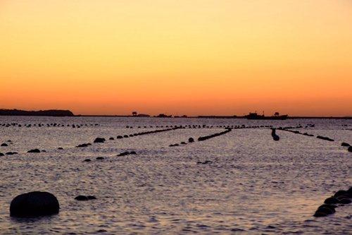哈仙岛林海渔家