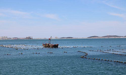 塞里岛莹超渔家