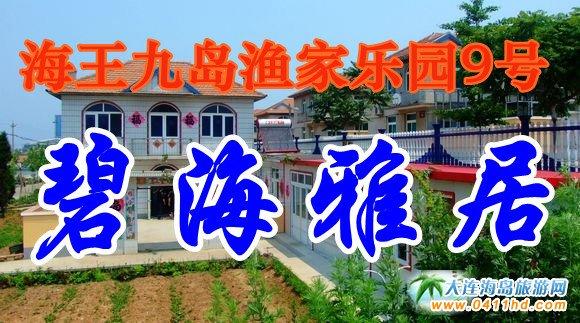海王九岛渔家乐园9号-碧海雅居