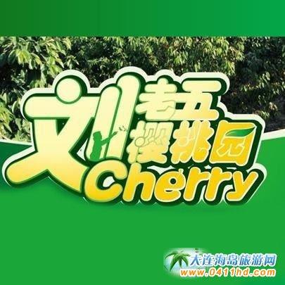 旅顺龙王塘刘老五樱桃园,龙王塘专业种植樱桃二十年!