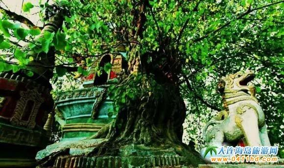中缅边境精美图片一览