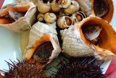 海王九岛渔家乐园9号的海鲜美食