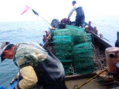 海王九岛海上捕捞图片
