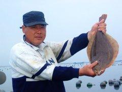 海王九岛网箱养殖海鲜