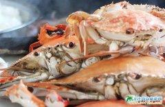 西中岛海鲜图片-飘香的渔家厨房