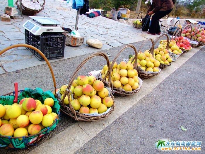 苹果图片,秋天的收获 3图片