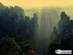张家界旅游景点图片-奇峰石林的