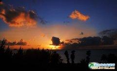 塞班岛图片-椰影中的浪漫夕阳