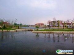 石城岛中心公园广场图片