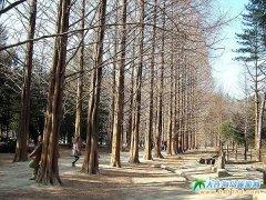 韩国江原道旅游线路2:首尔济州江原道四飞五日游3320元