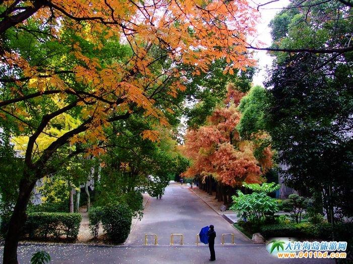 日本旅游景点图片