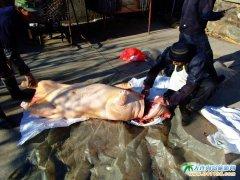石城岛旅游之――冬季农家杀猪菜