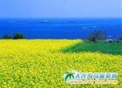 首尔、江原道亲子六日之旅