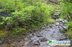西藏米林旅游资源丰富 林芝的后花园