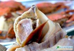 哈仙岛图片――清蒸海螺