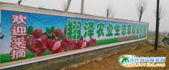 大连翔泽生态农业草莓采摘园
