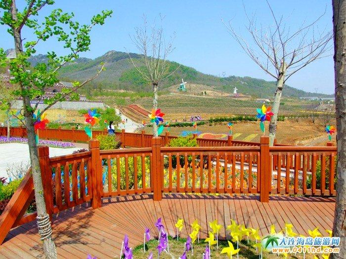 风的妩媚,春的舞动,紫云花汐风车文化节图集15
