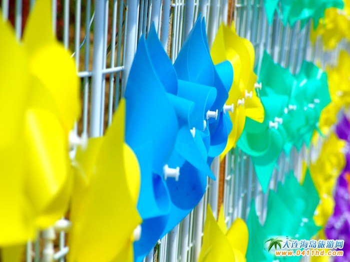 风的妩媚,春的舞动,紫云花汐风车文化节图集20