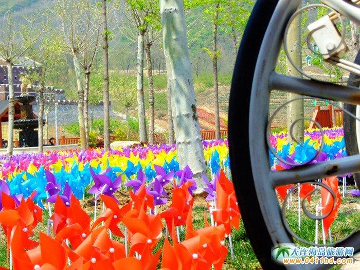 风的妩媚,春的舞动,紫云花汐风车文化节图集28