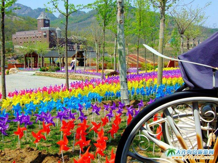 风的妩媚,春的舞动,紫云花汐风车文化节图集29