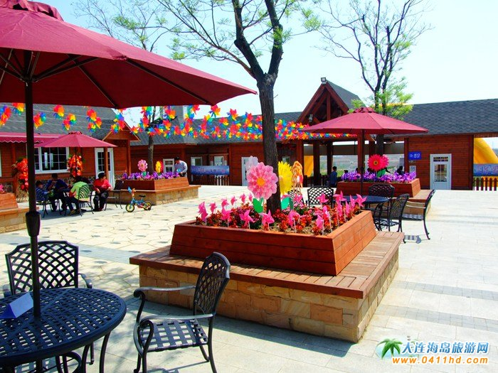风的妩媚,春的舞动,紫云花汐风车文化节图集30