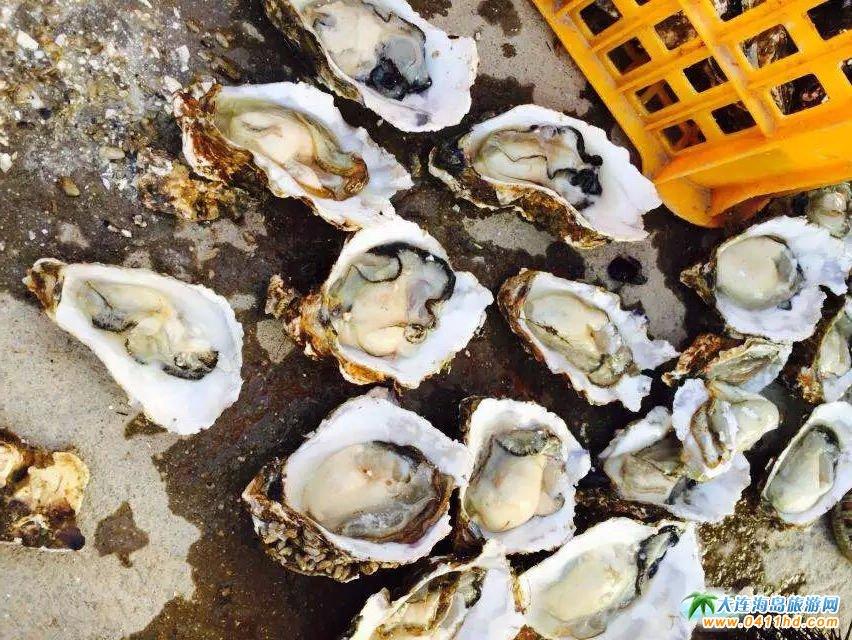 可以生吃的牡蛎