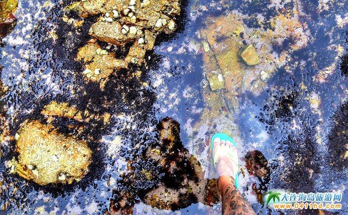 大美瓜皮岛――游客眼中的长海县小岛8