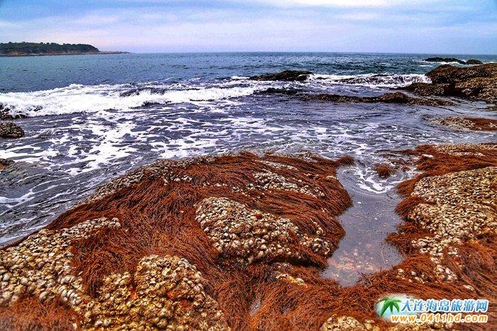 大美瓜皮岛――游客眼中的长海县小岛7