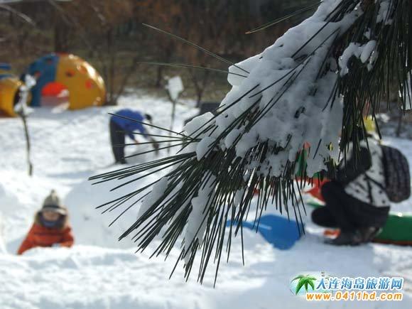 劳动公园滑雪场