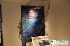 大连生命奥秘博物馆对搁浅的抹香鲸相关信息进行展出