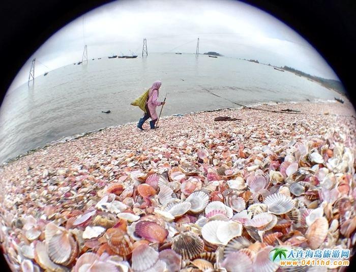 石城岛旅游景点――彩贝滩
