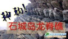 石城岛图片――神奇的龙脊礁