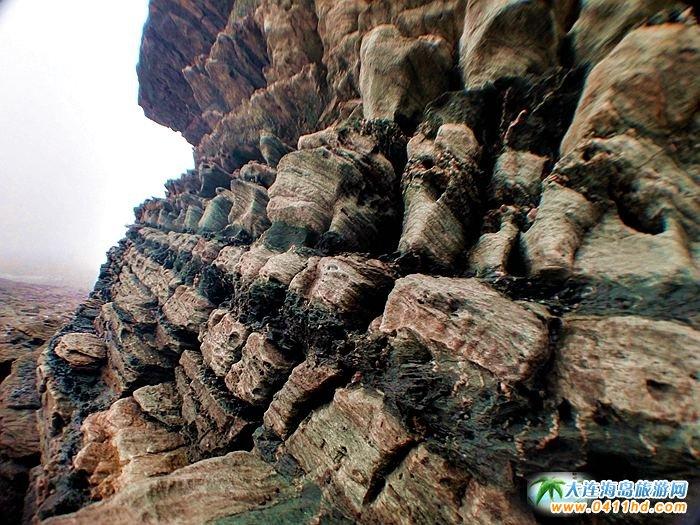 石城岛图片――神奇的龙脊礁6