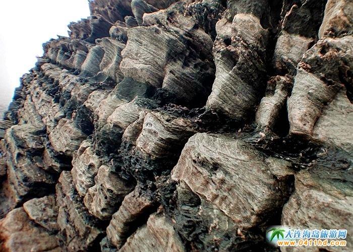 石城岛图片――神奇的龙脊礁7