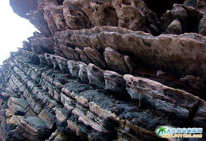 石城岛图片――神奇的龙脊礁12