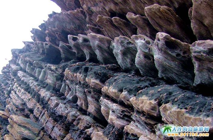 石城岛图片――神奇的龙脊礁15