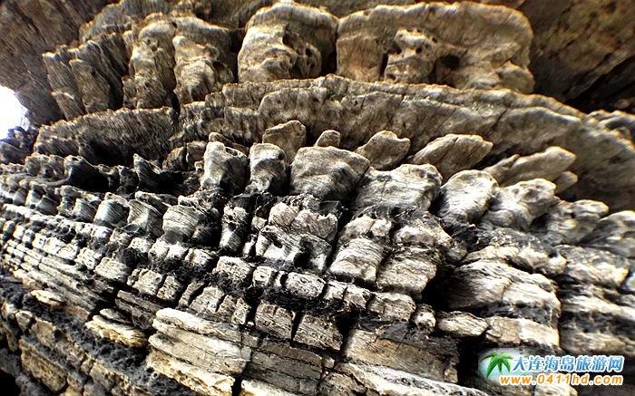 石城岛图片――神奇的龙脊礁19