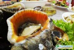 石城岛海鲜美食图片-大连海岛旅