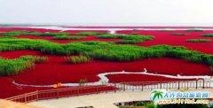 大连周边两日游   盘锦红海滩