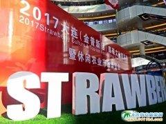 2017大连(金普新区)草莓文化旅游节欢乐启幕,预热新春佳节!