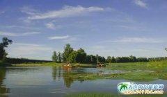 终于知道春游该去哪里玩了 北京最美的10大湿地公园