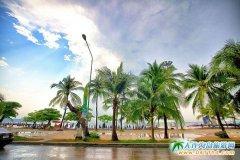 5月曼谷芭堤雅金沙岛8日品质游 大连直飞泰国曼谷
