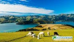 新西兰旅游丨5月起中国公民可获5年多次往返新西兰签证