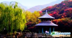 去山东旅游什么季节最好