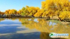 想去草原旅游都有什么可玩的,景点都有哪些!