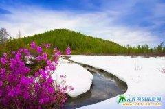 大兴安岭――世界上最纯净美丽的地方