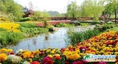 """带妈妈来英歌石植物园领略一场""""花花世界"""""""