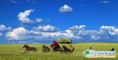 贡格尔草原旅游攻略、大连到贡格尔草原线路