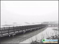 苏州太湖的清晨,别有一番滋味